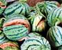 夏季食品安全消费提示