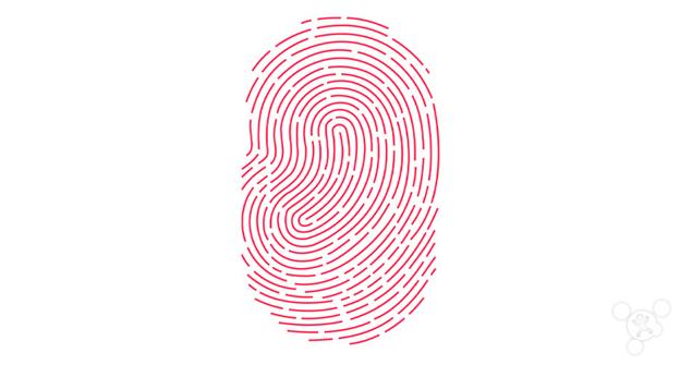 如何指纹捺印才受法律保护?