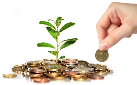 什么是政府投资?