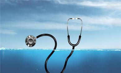 申请法医鉴定流程怎么走呢