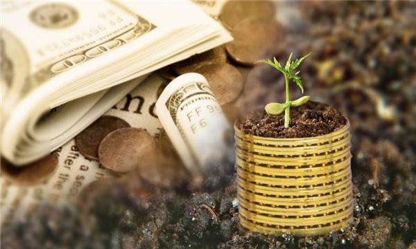 创业投资需要一点融资技巧