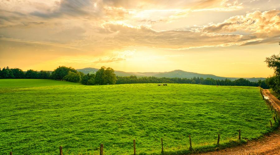 农村安置房屋买卖纠纷的解决办法