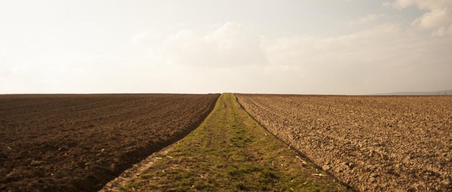 农村土地征收的基本程序是什么