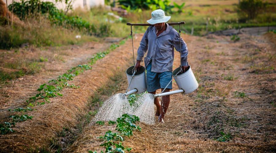 农村土地被征用赔偿多少钱一亩