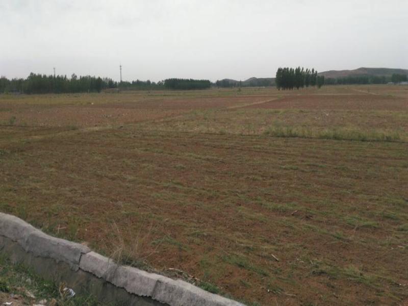 土地征收补偿安置公告的期限
