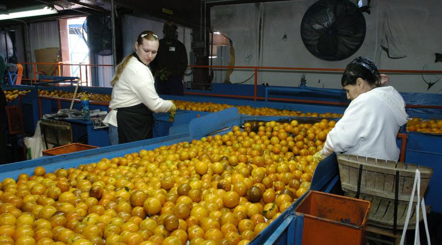 内蒙古自治区女职工劳动保护的具体规定