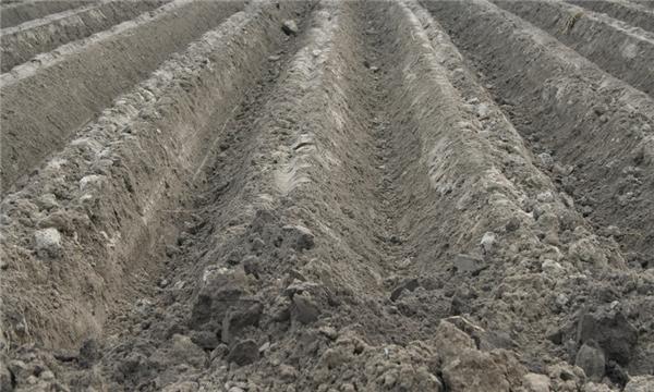 农村土地征用程序怎么进行