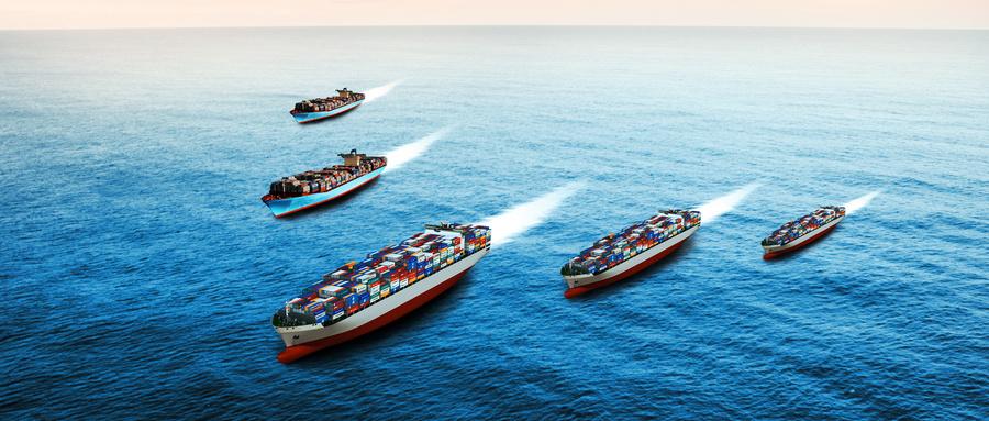 船舶所有权的权利主体是谁