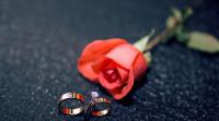 结婚证被撕了怎么起诉离婚