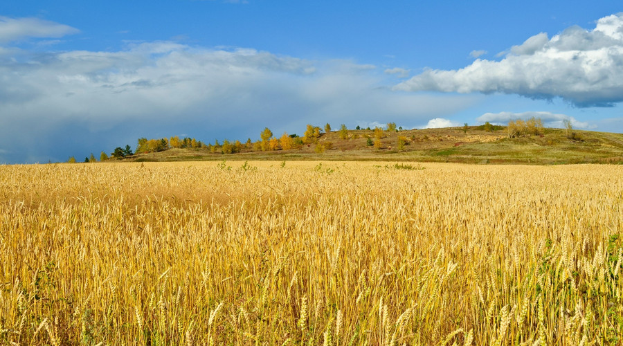 什么是土地确权,2020土地确权新政策是怎样
