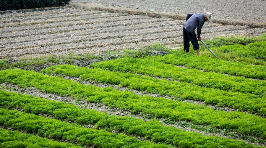 征收基本农田应由哪个部门批准