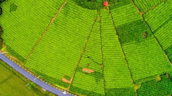 農村土地征收的流程是怎么樣的