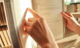 知识产权诉讼案件的流程怎么走